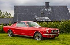 1965年Ford Mustang Fastback 库存照片