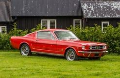 1965年Ford Mustang Fastback 免版税库存照片