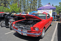 Ford Mustang Fastback 免版税图库摄影