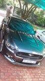 2015 Ford mustang GT Obraz Stock