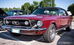 Ford Mustang GT fotografering för bildbyråer