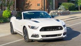 Ford Mustang GT bij `-Mustangsteeg `, bij de Woodward-Droomcruise Stock Foto's