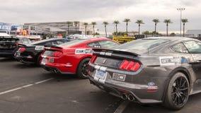 Ford Mustang GT350s, associação SEM do mercado do equipamento da especialidade Imagem de Stock
