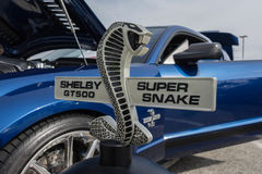 Ford Mustang GT500 Shelby Super Snake Royalty-vrije Stock Foto