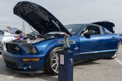 Ford Mustang GT500 Shelby Super Snake Royalty-vrije Stock Fotografie