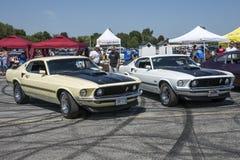 对Ford Mustang mach1 免版税库存图片