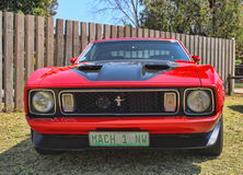 Ford Mustang Mach 1 Front View Royalty-vrije Stock Fotografie