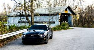 2014 Ford Mustang negro Fotos de archivo libres de regalías