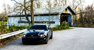 2014 Ford Mustang noir Photos libres de droits
