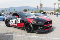 Ford Mustang op vertoning Stock Foto's