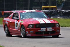 Ford Mustang Race Royalty Free Stock Images