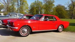 Ford Mustang rouge, tour classique de voitures de vintage Photos stock