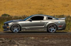 Ford Mustang Saleen. Photo of 2008 Ford Mustang Saleen S302 Extreme Sterling Edition Car nr 15 of 25 manufactured royalty free stock image