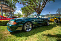 Ford Mustang 5.0 Saleen Royalty Free Stock Photo