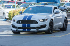 Ford mustang Shelby GT350 Zdjęcie Stock