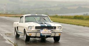 Ford Mustang - snelheidstest Royalty-vrije Stock Afbeeldingen
