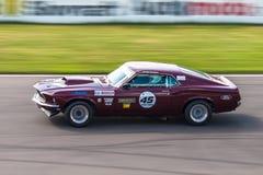 Ford Mustang tävlings- bil Royaltyfri Bild
