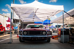 Ford Mustang tävlings- bil Royaltyfria Foton