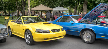Ford Mustang Royalty Free Stock Photo