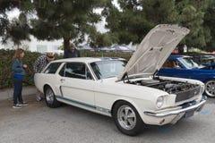 Ford mustanga furgon GT 350 na pokazie Obrazy Stock