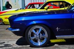 Ford Mustangs i en offentlig för V8 för USA-muskelbilar show bil royaltyfri bild