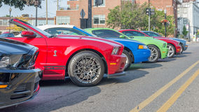Ford Mustangs,  Mustang Alley, Woodward Dream Cruise Stock Photography