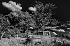 49 Ford Pickup. A 49 Ford Pickup lays in a field in the Texas Hill country beneath a beautiful sky Royalty Free Stock Photography