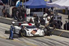 Ford Potere-Sono all'arresto del pozzo alle grandi corse di Rolex Fotografie Stock Libere da Diritti