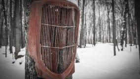 Ford 1936 tauschen den Grill, der in den schneebedeckten Bäumen hängt Stockbild