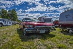 1965年Ford Thunderbird, t鸟 库存图片