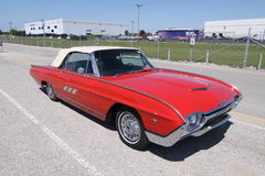 Ford Thunderbird  Stock Image