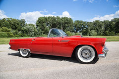 1955 Ford Thunderbird Stock Foto