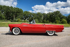 1955 Ford Thunderbird Stock Foto's