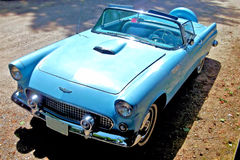 56 Ford Thunderbird 库存图片