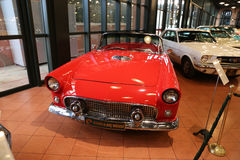 Ford 1956 Thunderbird Images libres de droits