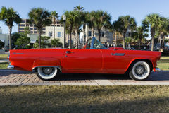 Ford Thunderbird 1955 Stockfotos