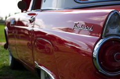 A rear view of a classic 1955 Ford Thunderbird in cherry red Royalty Free Stock Images