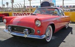 1955 Ford Thunderbird Royalty Free Stock Photo