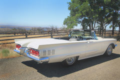 1960 Ford Thunderbird Convertible. A Classic 1960 shiny white Ford Thunderbird Convertible sitting in the sunshine on a country road by a corral. Shallow depth Stock Photo