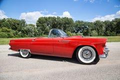 1955 Ford Thunderbird Stock Photo