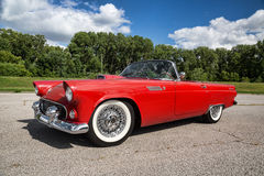 1955 Ford Thunderbird Stock Image
