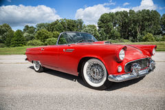 1955 Ford Thunderbird Royalty Free Stock Photo