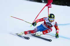 FORD Tommy in Audi Fis Alpine Skiing World-Kop Stock Afbeeldingen