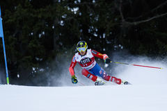 FORD Tommy in Audi Fis Alpine Skiing World-Kop Royalty-vrije Stock Afbeeldingen