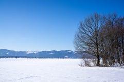 Forderungen durchgesetzt mit Schnee Lizenzfreies Stockfoto
