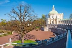 Forecourt of the palace with big tree. Lomonosov, Leningrad Oblastt, Russia - May 10, 2015: Forecourt of Bolshoy (Menshikovskiy) palace. Located in Oranienbaum Royalty Free Stock Photography