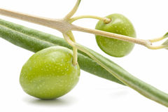 Forefront of olives Stock Images