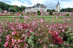 Chenonceau Royalty Free Stock Image