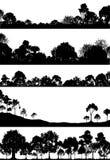 Foregrounds del arbolado Imagenes de archivo