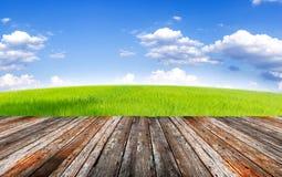 Foregroung e paesaggio di legno del campo verde sotto cielo blu e Fotografie Stock